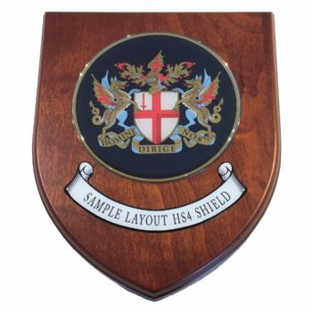 Presentation shield with round shaped centrepiece and scroll.